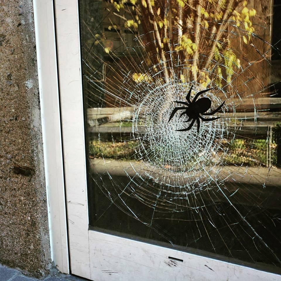araignée, cassée, fenetre, Oakoak, spider, streetart