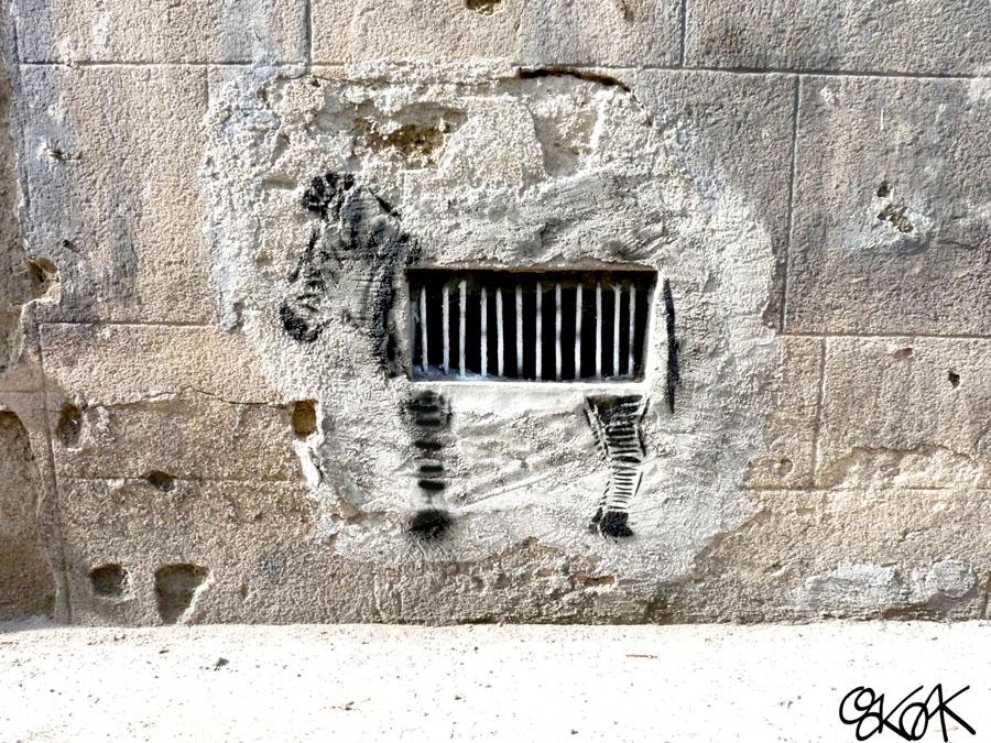 Zebra by Oakoak - Saint Etienne, France, 2012